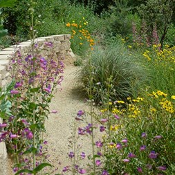 Xeriscaping: What It Is and How to Do It