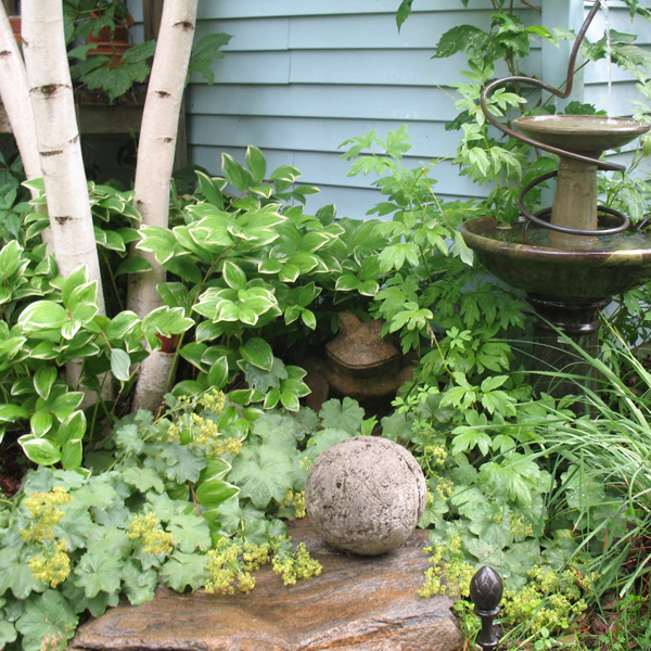 Small Space Landscaping | Costa Farms