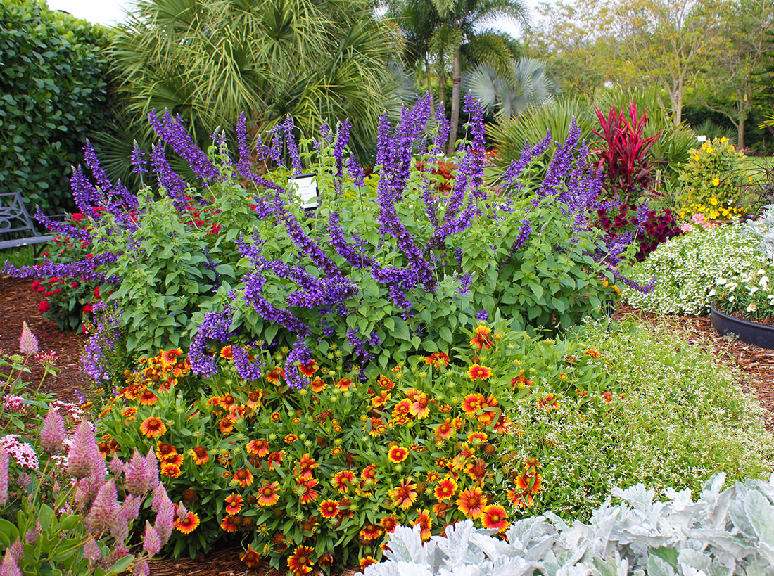 Easy care garden ideas costa farms for Easy flower garden designs