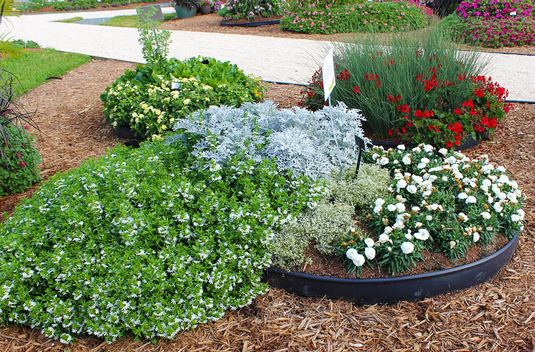 Easy care garden designs 28 images garden sense for Easy upkeep landscaping