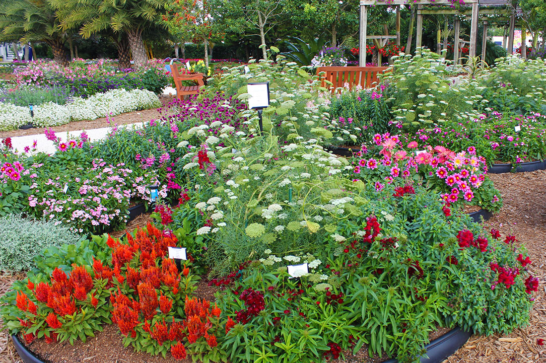 Top 28 cut flower garden design cutting flower garden design 15 fast growing flowers for a - Small space farming image ...