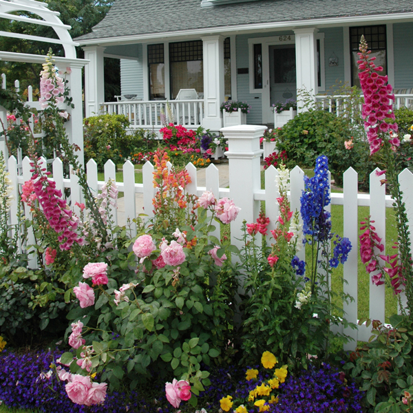 Dress Up The Edges of Your Yard | Costa Farms